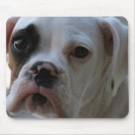 Black Eyed Boxer Dog Mouse Pad