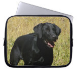 Black Lab in Field Laptop Sleeve
