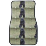 Black Portuguese Water Dog Car Mat