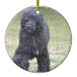 Black Portuguese Water Dog Ceramic Ornament