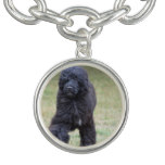 Black Portuguese Water Dog Charm Bracelet