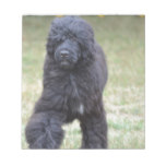 Black Portuguese Water Dog Notepad