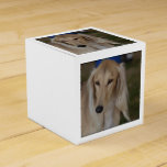 Blonde Saluki Dog Favor Box