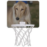 Blonde Saluki Dog Mini Basketball Hoop
