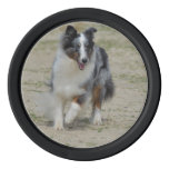 Blue Merle Australian Shepherd Set Of Poker Chips