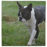 Boston Terrier Puppy Napkin