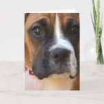 Boxer Rescue Greeting Card