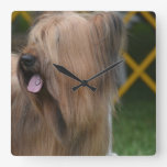 Briard Square Wall Clock