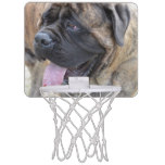 Brindle Mastiff Mini Basketball Backboard