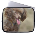 Brown Toy Poodle Computer Sleeve