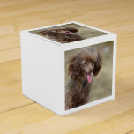 Brown Toy Poodle Favor Box