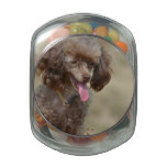 Brown Toy Poodle Glass Candy Jar