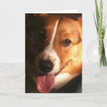 Cardigan Welsh Corgi Greeting Card