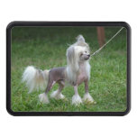 Chinese Crested Dog Trailer Hitch Cover