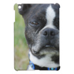 Classic Boston Terrier Dog Cover For The iPad Mini