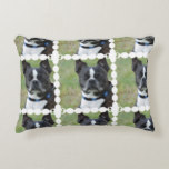 Classic Boston Terrier Dog Decorative Pillow