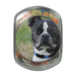 Classic Boston Terrier Dog Glass Candy Jar