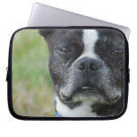 Classic Boston Terrier Dog Laptop Sleeve