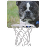 Classic Boston Terrier Dog Mini Basketball Hoop