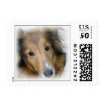 Collie on a Postage Stamp