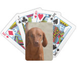 Coonhound Bicycle Playing Cards