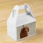 Coonhound Favor Box