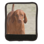 Coonhound Luggage Handle Wrap