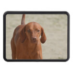Coonhound Trailer Hitch Cover