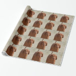 Coonhound Wrapping Paper