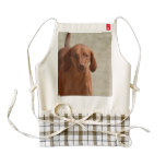 Coonhound Zazzle HEART Apron