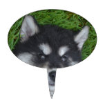 Cute Alusky Puppy Dog on His Back Cake Topper