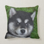 Cute Alusky Puppy Dog on His Back Throw Pillow