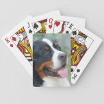 Cute Bernese Deck of Cards