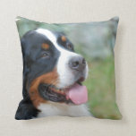 Cute Bernese Pillow