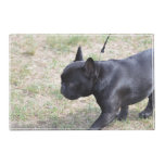 Cute Black French Bulldog Placemat