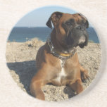 Cute Boxer Dog Coasters
