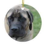 Cute English Mastiff Ceramic Ornament