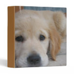 Cute Golden Pup Binder