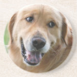 Cute Golden Retriever Coaster