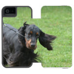 Cute Gordon Setter Wallet Case For iPhone SE/5/5s
