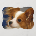 Cute Papillon Dog Invitation