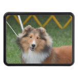 Cute Sheltie Hitch Cover