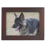 Cute Shiloh Shepherd Keepsake Box
