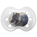 Cute Shiloh Shepherd Pacifier
