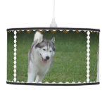 Cute Siberian Husky Hanging Lamp