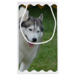 Cute Siberian Husky Small Gift Bag