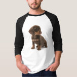 Dachshund Puppy Long Sleeve Men's T-Shirt