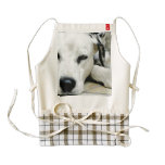 dalmatian-21 zazzle HEART apron