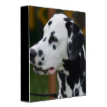 Dalmatian with Spots Binder