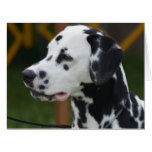 Dalmatian with Spots Card